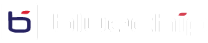 Bluechip IT Logo